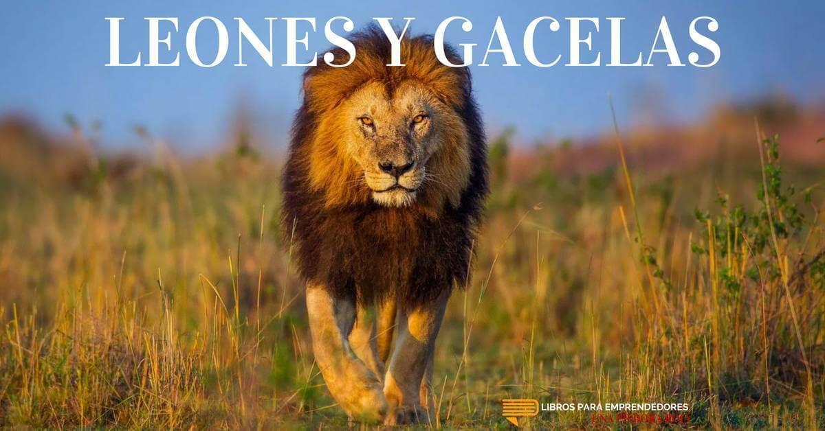 #UPR021 – Leones y Gacelas